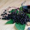 EkoMedica Čierna baza 100% šťava 500 ml