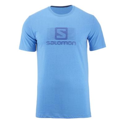 SALOMON Blend Logo SS Tee M Blue