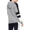 Mikina UNDER ARMOUR Rival Fleece LC Logo Hoodie