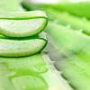 EkoMedica Aloe s dužinou 99,8% šťava