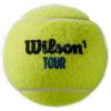WILSON Premier All Court 4 Ball Can